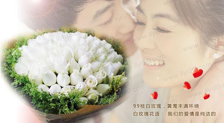 我们的约定白玫瑰花束包装一束